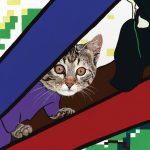 Ansichtkaart kat kopen